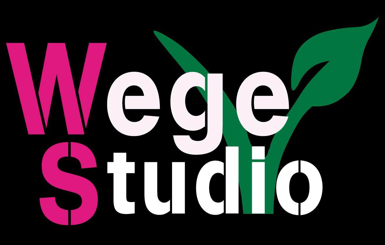 logo-wegestudio
